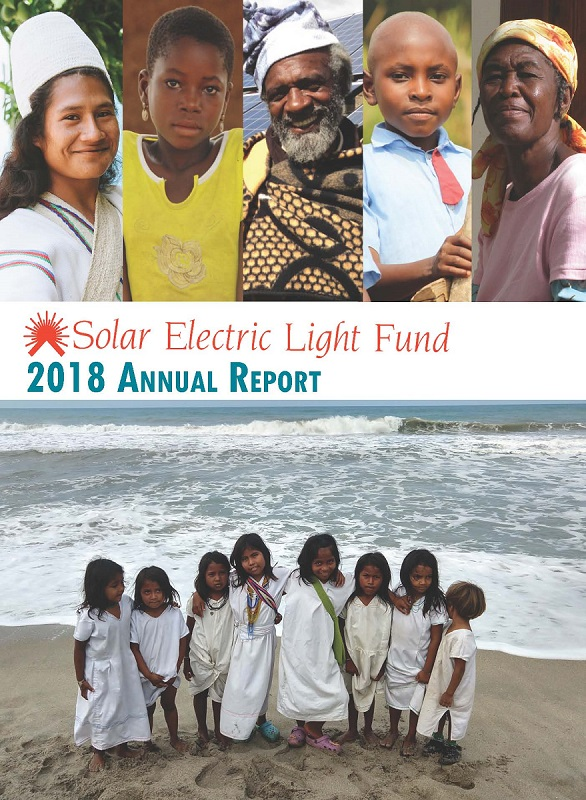 2017 SELF Annual Report